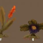 Plant_SwampEtoH