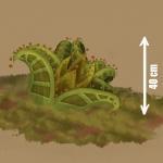 Plant_J